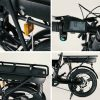 Rogi Pro Electric Bicycle (Other)