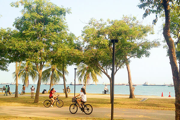 Singapore Cycling Routes